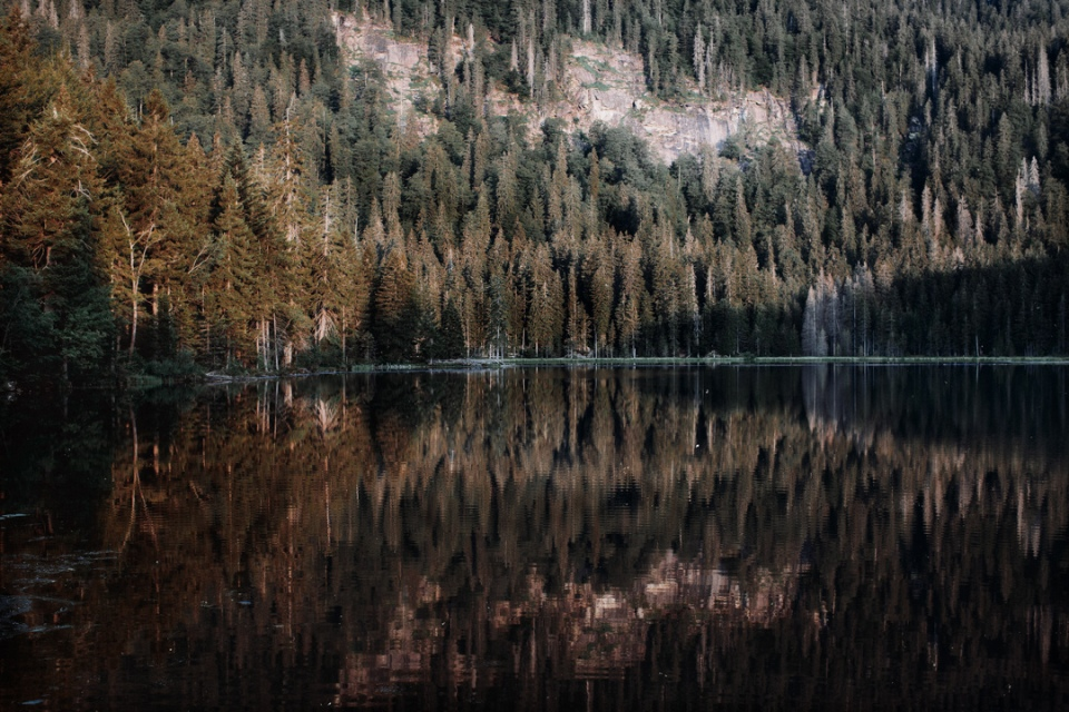 Landscape-bavfg_web