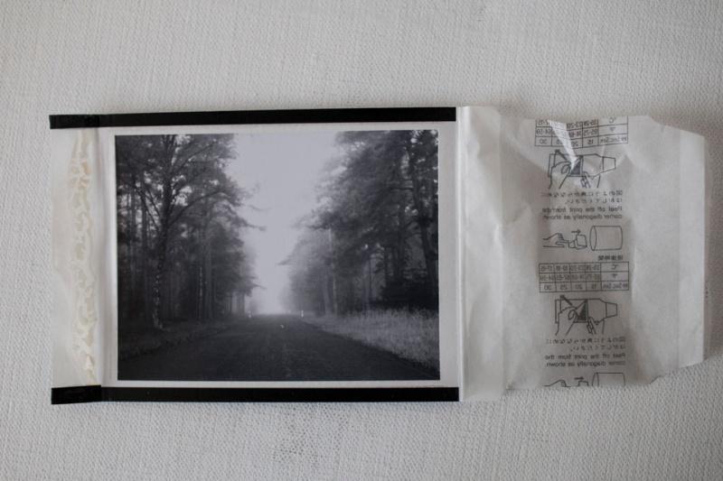 Polaroid 600 SE - Foto